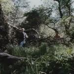 Hunter's Blood movie