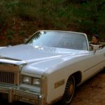 Mustang Sally movie