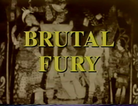 Brutal Fury movie