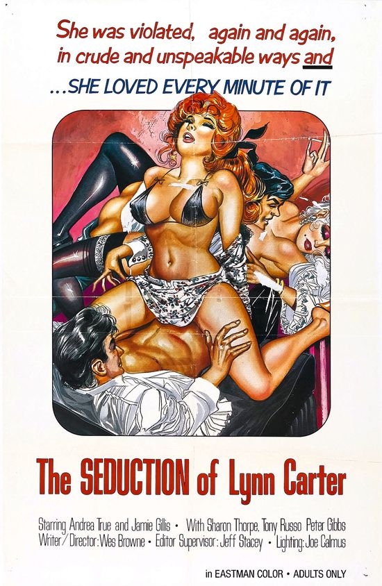 Seduction Of Lyn Carter movie