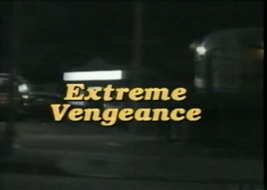 Extreme Vengeance movie