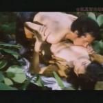 Erotic Journey movie