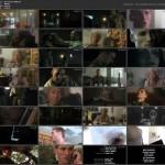 The Torturer (2008) movie