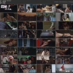 Painful Bliss: Final Twist movie