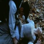 Cruel Passion movie