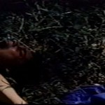 Lady Exterminator movie