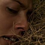 Night Of The Sunflowers movie