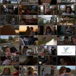 What's Eating Gilbert Grape movie