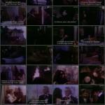 The Strange Love Of The Vampires movie