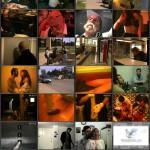 Urban Flesh movie