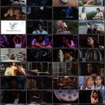 Star of David: Beauty Hunting movie