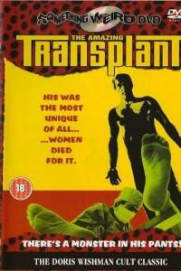 Amazing Transplant