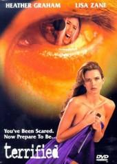 Toughguy AKA Evil Never Sleeps 1995