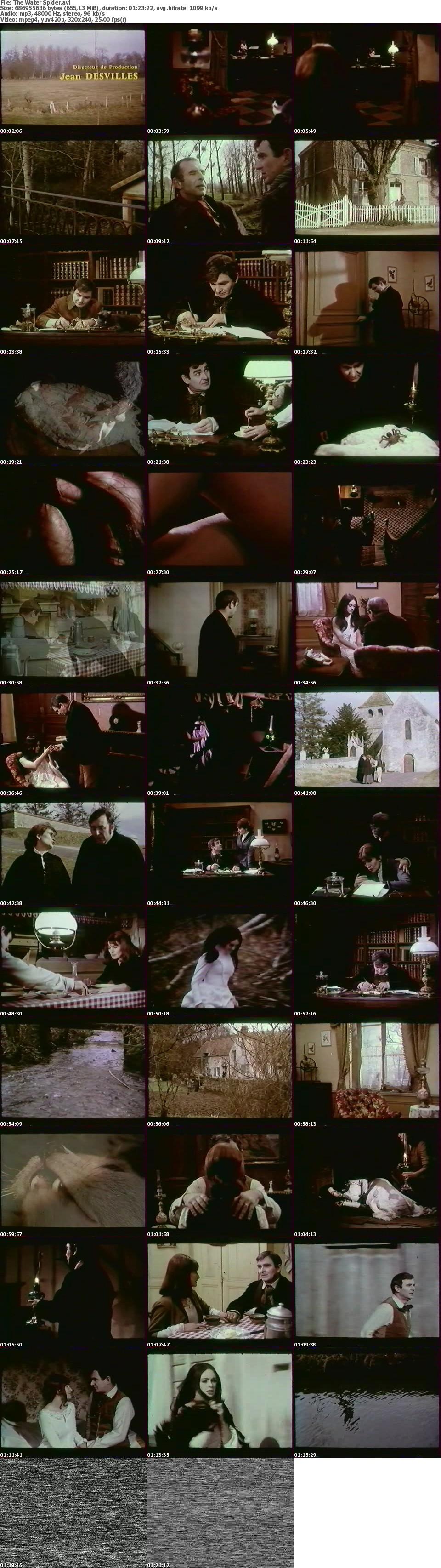 Boston Legal English Subtitles The Black Widow 66