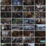 Cutter's Way  movie