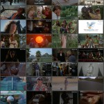 Hollywood Boulevard movie