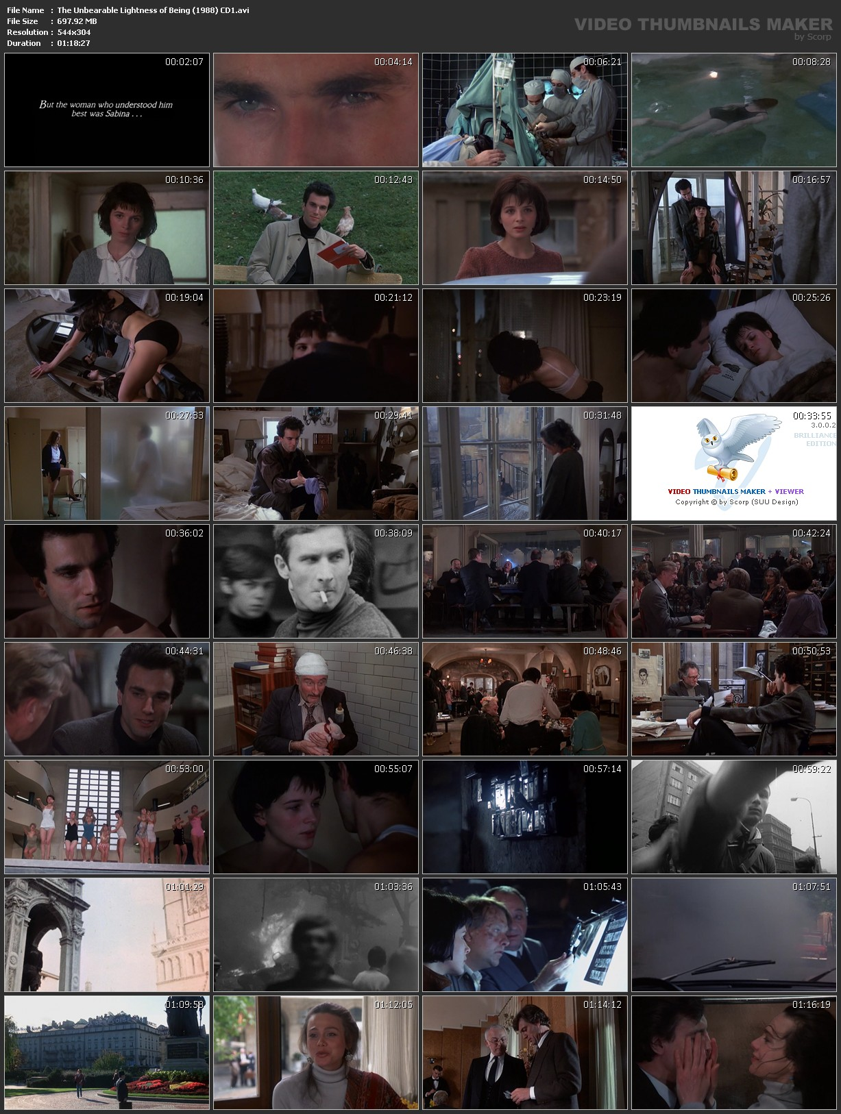 a comparison of the novel and movie versions of the unbearable lightness of being