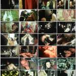 The Naked Countess movie