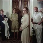 The Sensuous Nurse movie