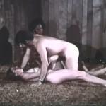 The Timid Debutante movie