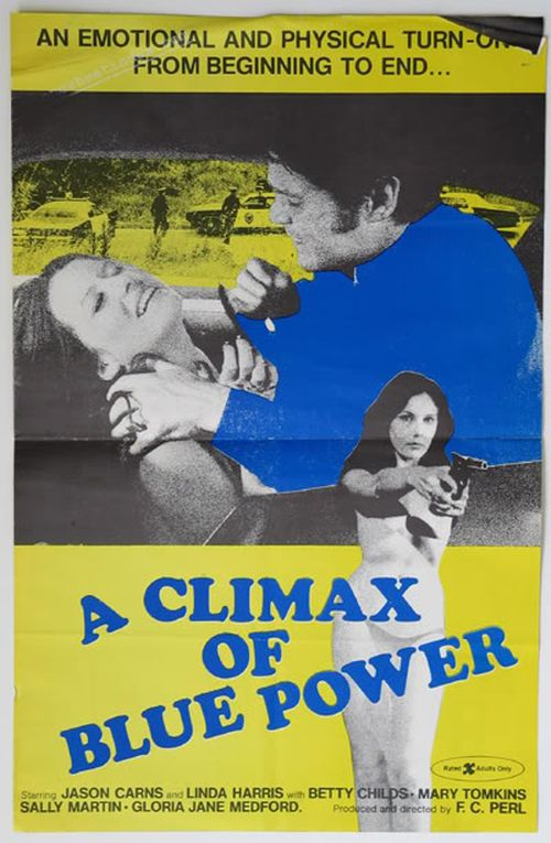 A Climax of Blue Power movie