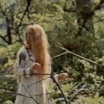 Leptirica movie