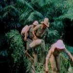 Horror Safari movie