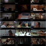 Four Flies on Grey Velvet movie