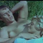 One Swedish Summer movie