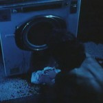 The Washing Machine movie