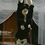 Bottled Vulva: Bank Teller Noriko movie
