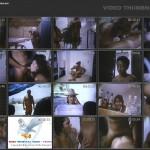 Fuk Fuk à Brasileira movie