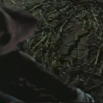 Night of the Scarecrow movie