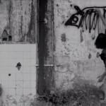 Febre do Rato movie