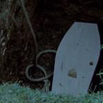 The Wyvern Mystery movie