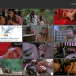Sex And Zen movie