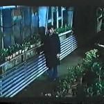 El invernadero movie