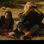 Eins og skepnan deyr movie