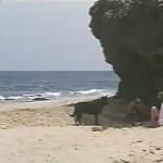 Playa azul movie