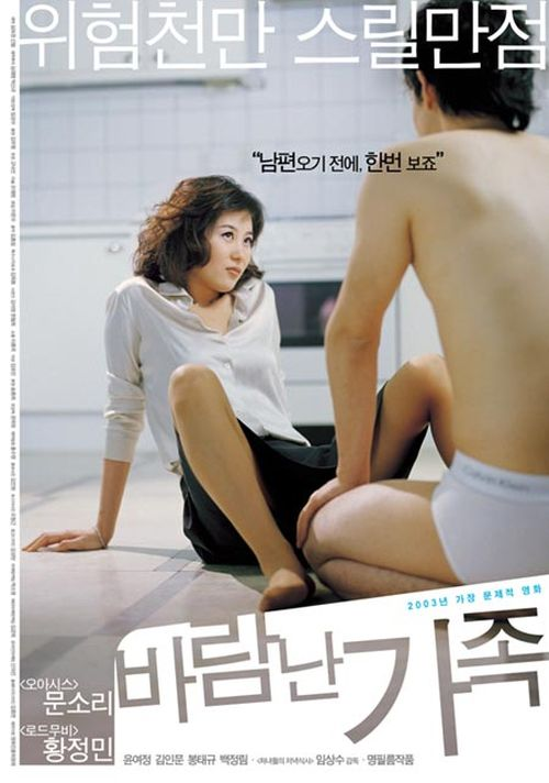 A Good Lawyer's Wife  movie