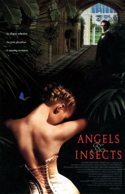 Angels and Insects movie