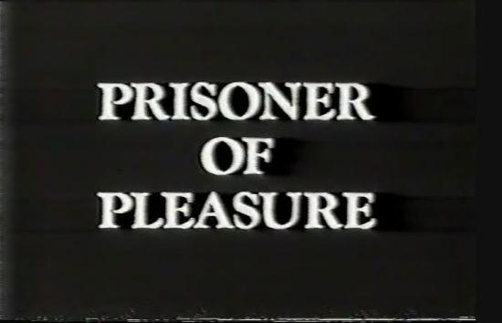 Prisoner Of Pleasure movie